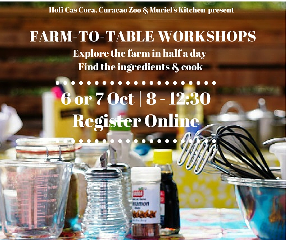 Register Online for this fun filled half day at the farm!