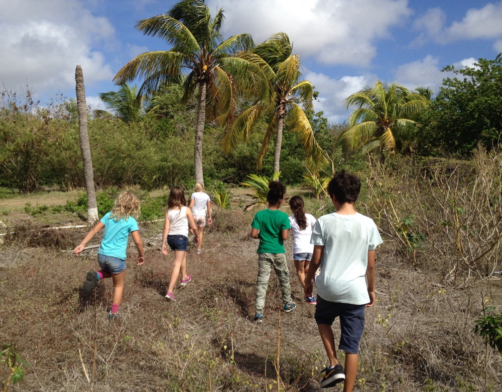 Summer holiday on Curacao with kids